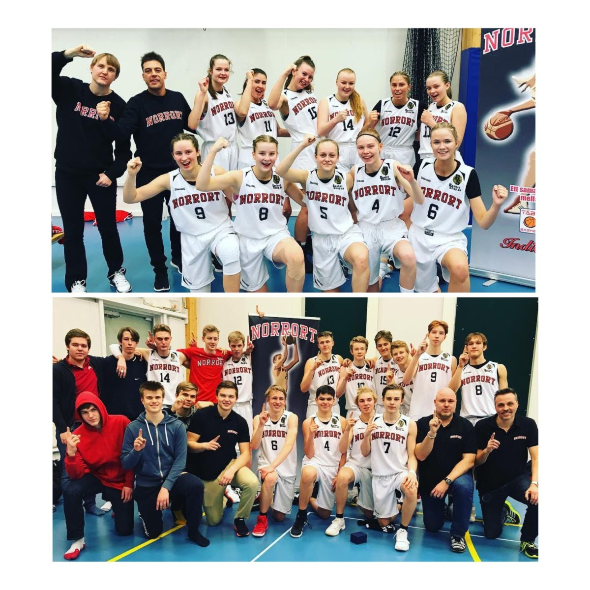 U17/F15: Supporterbuss till Final Four den 21-22/4 i Norrköping